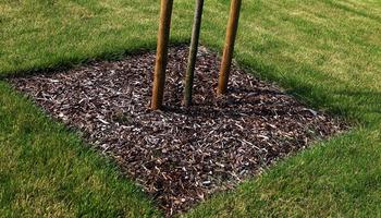 Cams Gardens- Realisaties